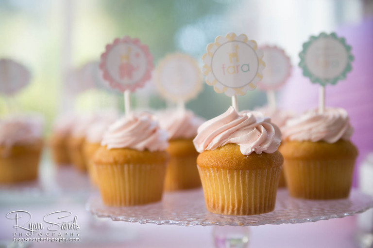 Princeton New Jersey Photographer - The cutest little birthday cupcakes in Princeton.