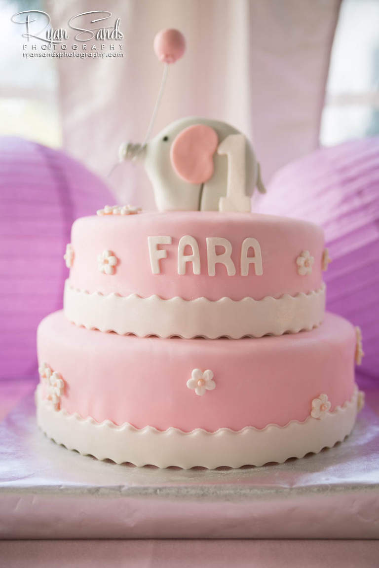 Princeton New Jersey Photographer - The cutest little birthday cake for a one year old girl.