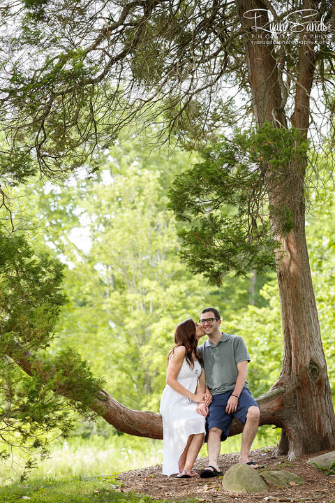 Here a bride and groom sit on a low hanging tree branch in Duke Farms during their engagement session in Somerset County, New Jersey.